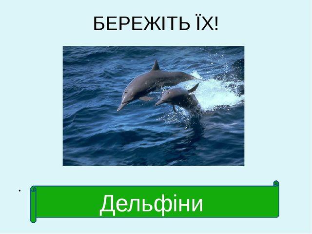БЕРЕЖІТЬ ЇХ! Дельфіни