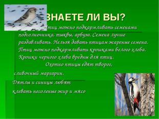 ЗНАЕТЕ ЛИ ВЫ? Птиц можно подкармливать семенами подсолнечника, тыквы, арбуза