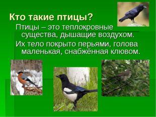 Кто такие птицы? Птицы – это теплокровные существа, дышащие воздухом. Их тело