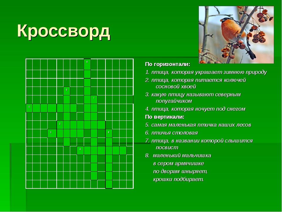 Кроссворд По горизонтали: 1. птица, которая украшает зимнюю природу 2. птица,...