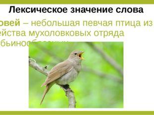 Соловей – небольшая певчая птица из семейства мухоловковых отряда воробьинооб