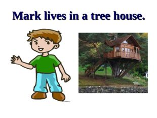 Mark lives in a tree house.