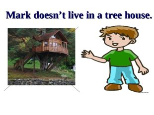 Mark doesn't live in a tree house.