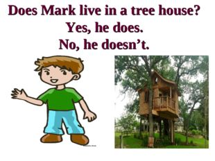 Does Mark live in a tree house? Yes, he does. No, he doesn't.