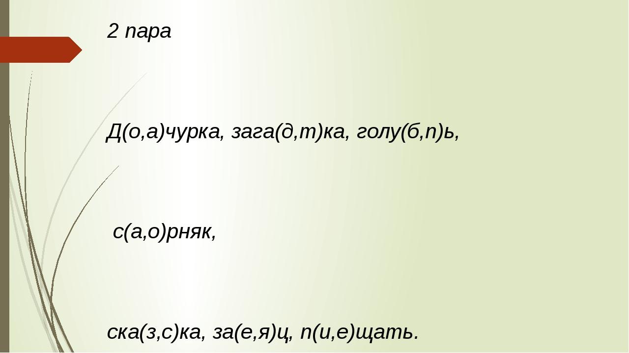 2 пара Д(о,а)чурка, зага(д,т)ка, голу(б,п)ь, с(а,о)рняк, ска(з,с)ка, за(е,я)ц...