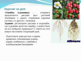 «Ошибка художника» - учащимся предлагаются рисунки двух растений земляники: у