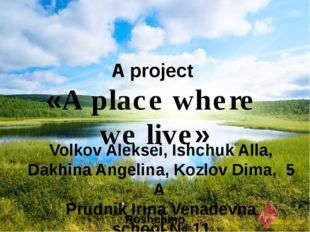 A project «A place where we live» Roshchino 2016 Volkov Aleksei, Ishchuk All