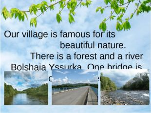 Our village is famous for its beautiful nature. There is a forest and a rive