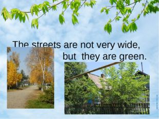 The streets are not very wide, but they are green.