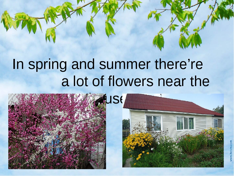 In spring and summer there're a lot of flowers near the houses.