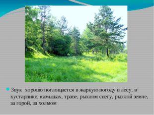 Звук хорошо поглощается в жаркую погоду в лесу, в кустарнике, камышах, траве,