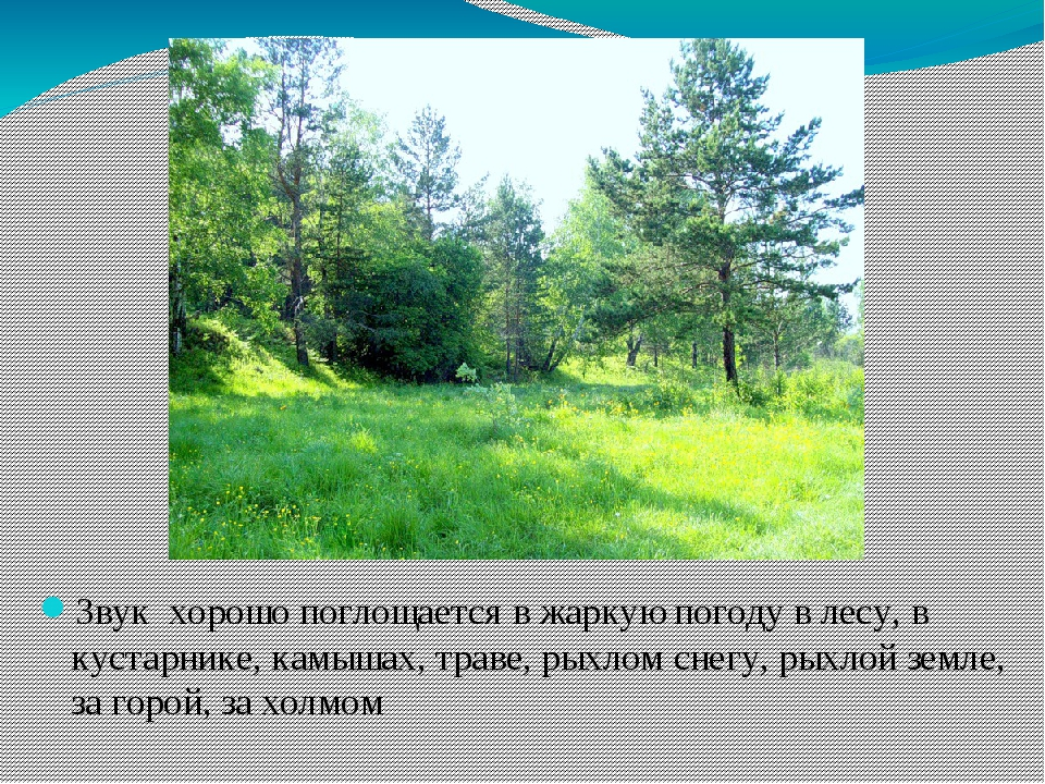 Звук хорошо поглощается в жаркую погоду в лесу, в кустарнике, камышах, траве,...