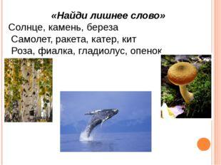 «Найди лишнее слово» Солнце, камень, береза Самолет, ракета, катер, кит Роза