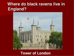 Where do black ravens live in England? Tower of London