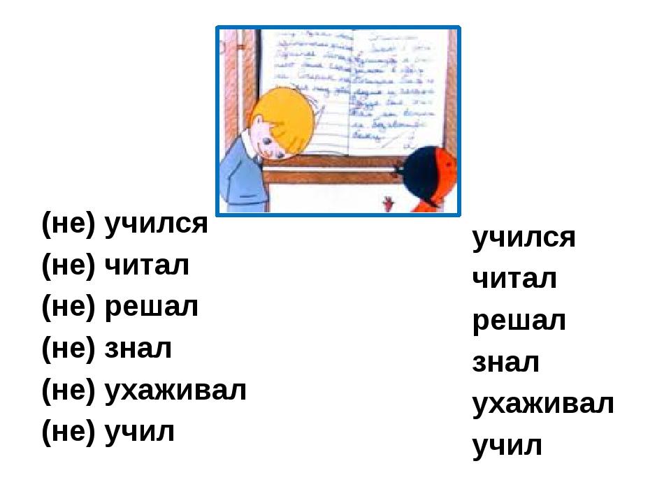 (не) учился (не) читал (не) решал (не) знал (не) ухаживал (не) учил учился чи...