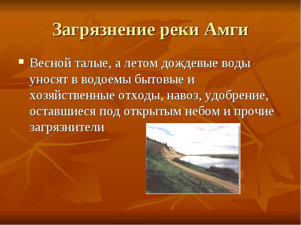 Загрязнение реки Амги Весной талые, а летом дождевые воды уносят в водоемы бы...
