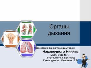 Органы дыхания Презентация по окружающему миру Наконечного Никиты МБОУ СОШ №