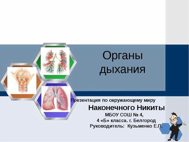 Органы дыхания Презентация по окружающему миру Наконечного Никиты МБОУ СОШ №...