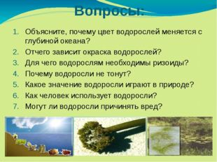 Вопросы: Объясните, почему цвет водорослей меняется с глубиной океана? Отчего
