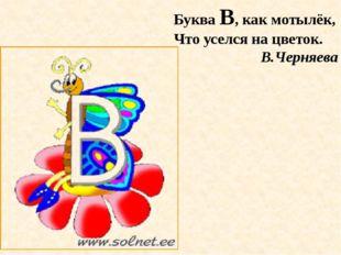 Буква В, как мотылёк, Что уселся на цветок. В.Черняева