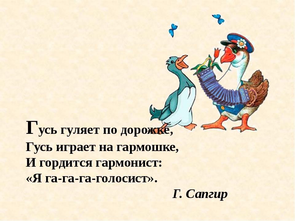Гусь гуляет по дорожке, Гусь играет на гармошке, И гордится гармонист: «Я га-...