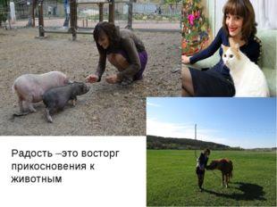 Радость –это восторг прикосновения к животным
