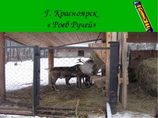Г. Красноярск « Роев Ручей»
