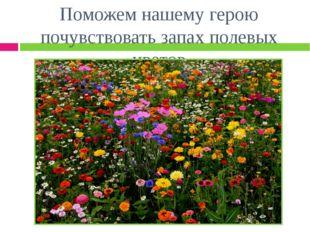 Поможем нашему герою почувствовать запах полевых цветов