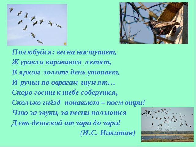 Полюбуйся: весна наступает, Журавли караваном летят, В ярком золоте день уто...