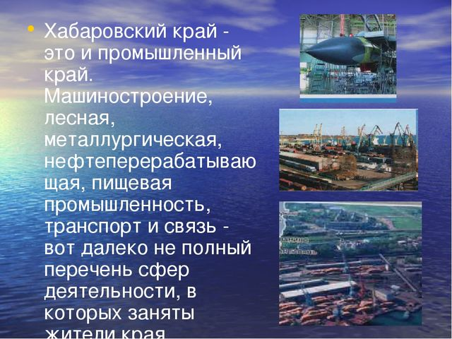 Хабаровский край - это и промышленный край. Машиностроение, лесная, металлург...