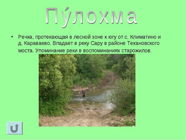 Речка, протекающая в лесной зоне к югу от с. Климатино и д. Караваево. Впадае...