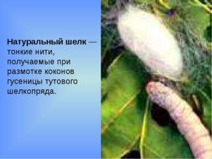 Натуральный шелк — тонкие нити, получаемые при размотке коконов гусеницы туто