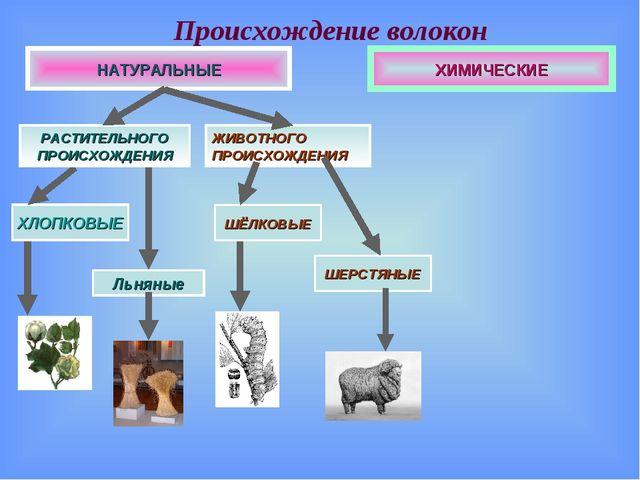 Происхождение волокон ХИМИЧЕСКИЕ НАТУРАЛЬНЫЕ