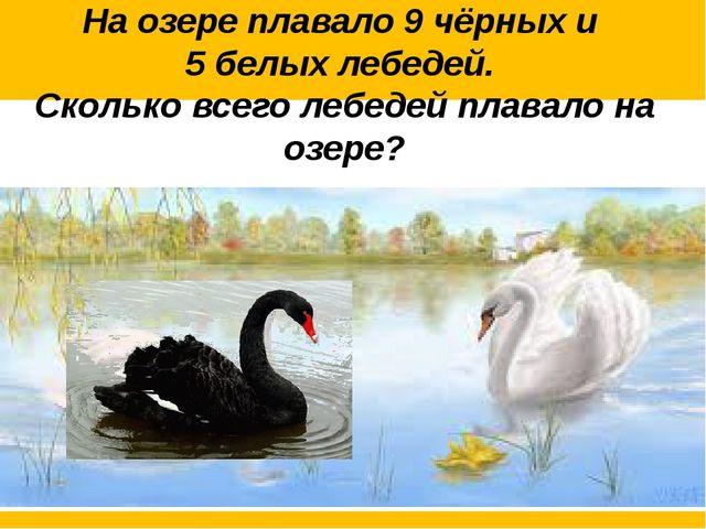 На озере плавало 9 чёрных и 5 белых лебедей. Сколько всего лебедей плавало н...
