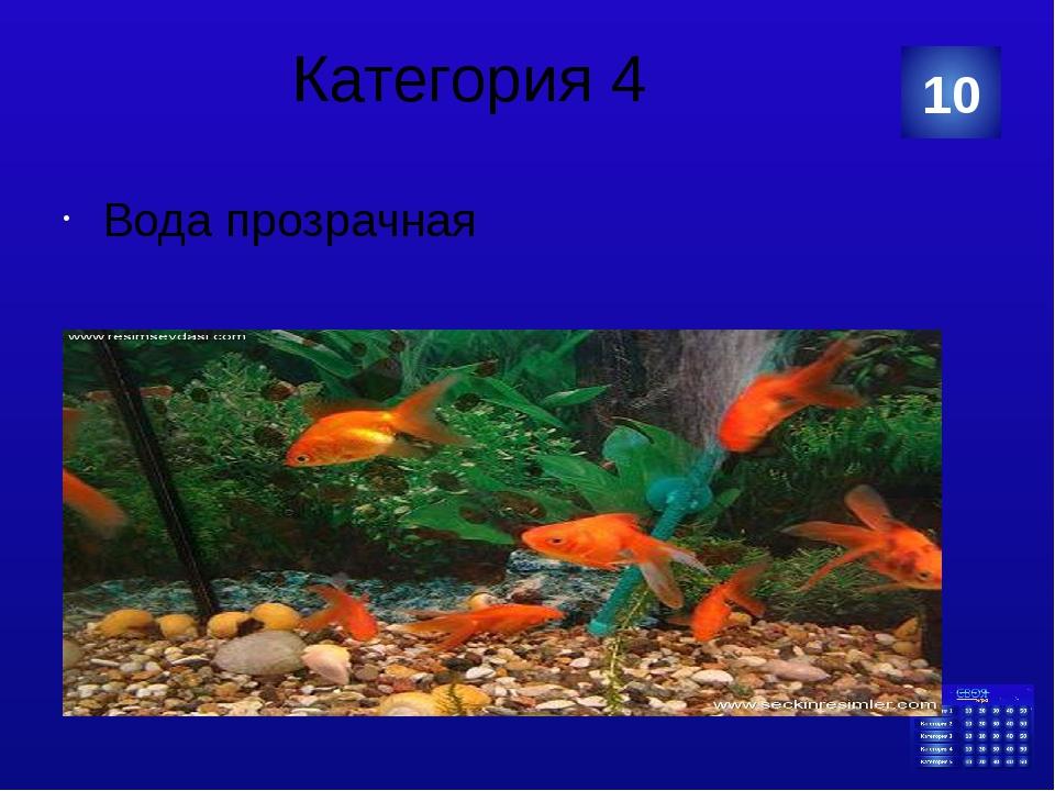 Категория 5 10 Категория Ваш ответ