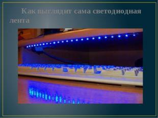 Как выглядит сама светодиодная лента