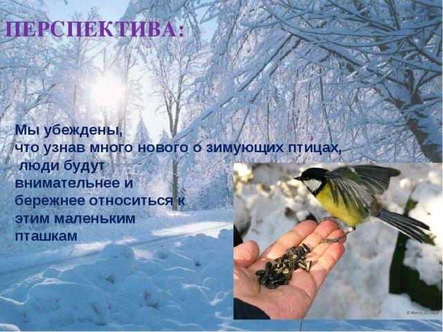 ПЕРСПЕКТИВА: Мы убеждены, что узнав много нового о зимующих птицах, люди буду...