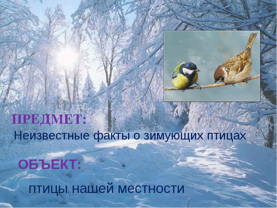 ПРЕДМЕТ: Неизвестные факты о зимующих птицах ОБЪЕКТ: птицы нашей местности