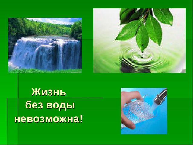 Жизнь без воды невозможна!
