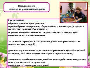 Насыщенность предметно-развивающей среды Организация образовательного простр