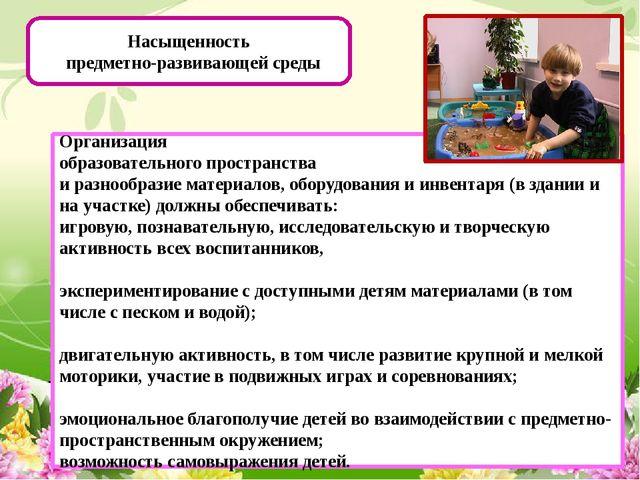 Насыщенность предметно-развивающей среды Организация образовательного простр...