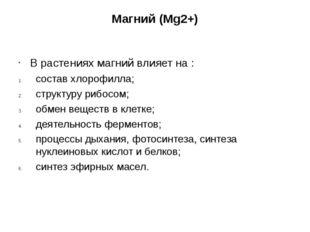 Магний (Mg2+) В растениях магний влияет на : состав хлорофилла; структуру