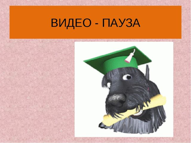 ВИДЕО - ПАУЗА
