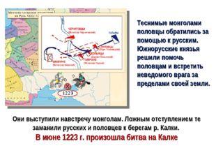 Теснимые монголами половцы обратились за помощью к русским. Южнорусские князь