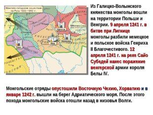 Из Галицко-Волынского княжества монголы вошли на территории Польши и Венгрии.