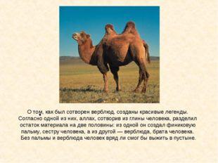 О том, как был сотворен верблюд, созданы красивые легенды. Согласно одной из