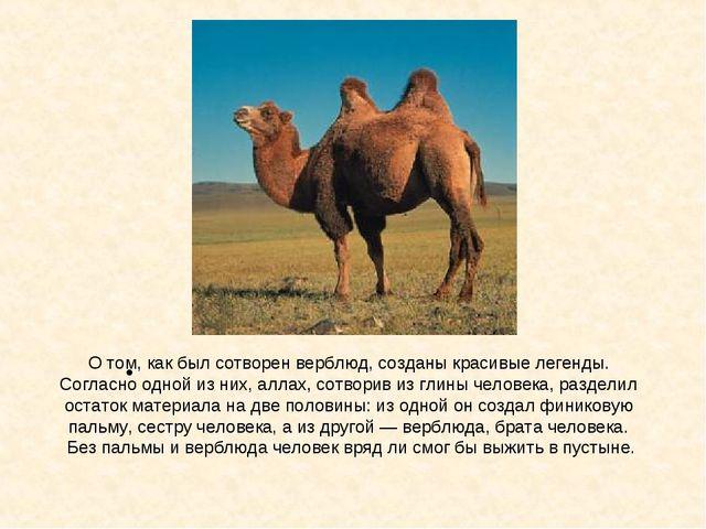 О том, как был сотворен верблюд, созданы красивые легенды. Согласно одной из...