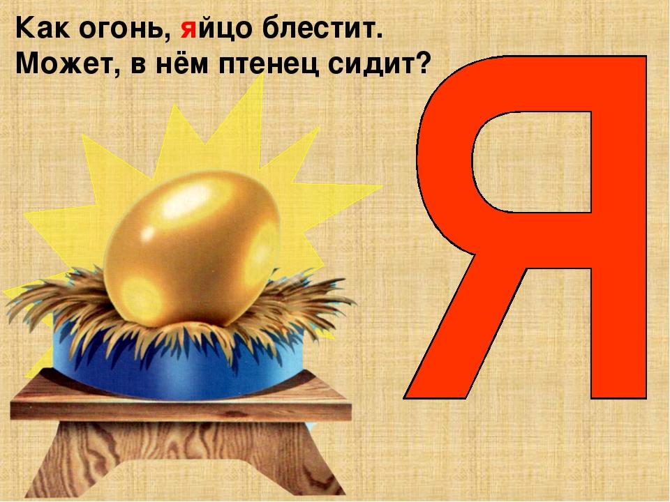 Как огонь, яйцо блестит. Может, в нём птенец сидит?
