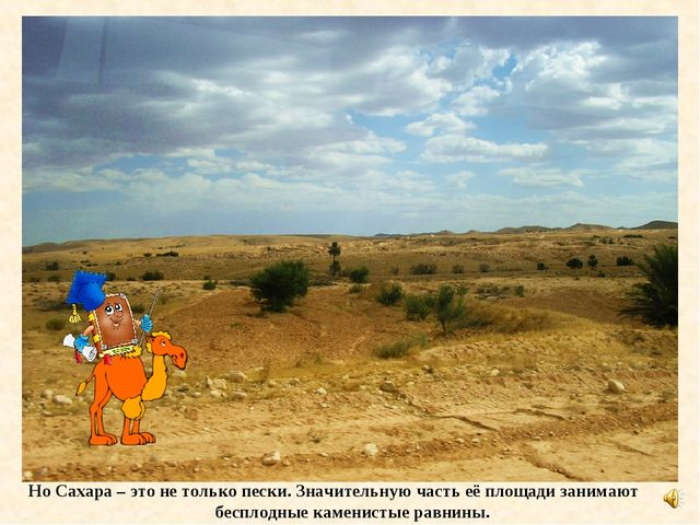 Но Сахара – это не только пески. Значительную часть её площади занимают беспл...