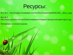 Фон № 1 - http://images.forwallpaper.com/files/thumbs/preview/60/601082__dai